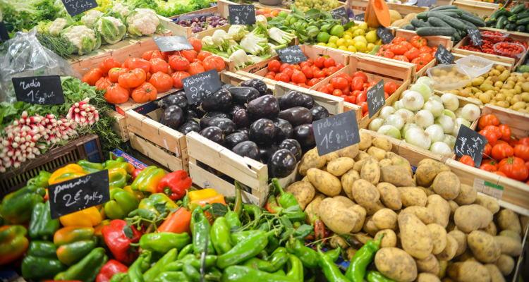 Belieferung mit ökologischen Lebensmitteln – Zwischenstand