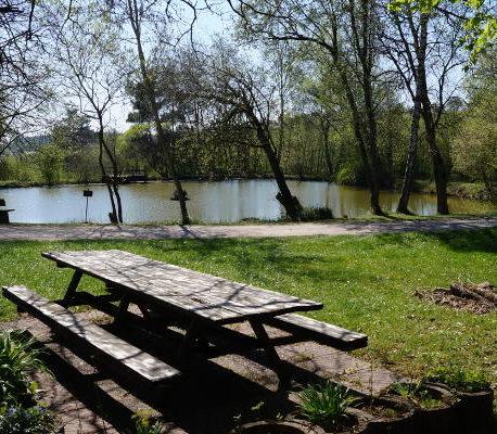 """Versteckte Ecken: Der """"neue See"""" in Wittershausen"""