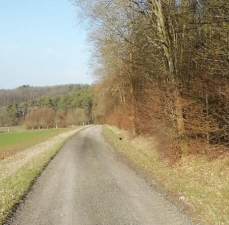 Radweg zwischen Wittershausen und Oberthulba verbessert